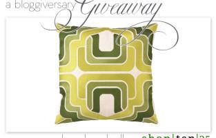 a bloggiversary giveaway :: shop ten 25