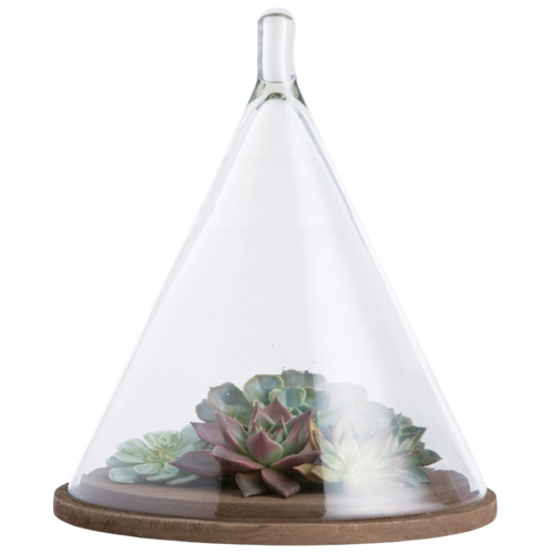Pulp Home - Conical Cloche