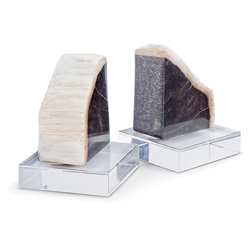 Pulp Home - Petrified Wood Bookends on Crystal
