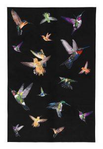 alexander-mcqueen-hummingbird-rug_1600_1_3