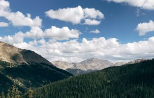 Design From Afar:  From Dallas to Aspen